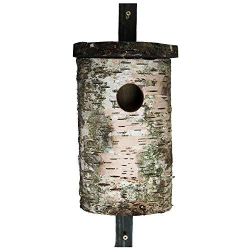 FLORAX Nistkasten für Stare, handgefertigter Vogelkasten aus natürlichem Birkenstamm - Höhe ca. 30cm Durchmesser ca. 18cm