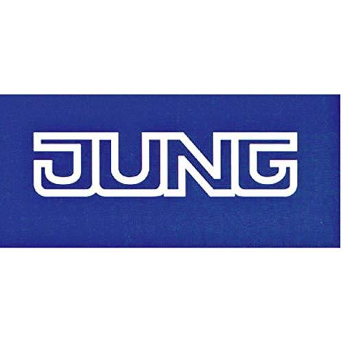 Jung LS 1520 WW
