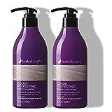 Best Shampoo For Gray Hairs - 2 x 16.9 Fl Oz Purple Shampoo Review