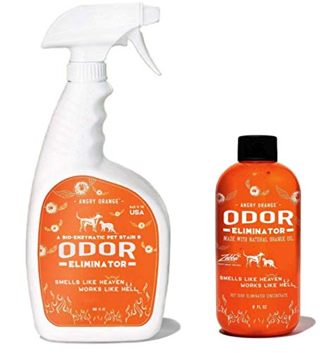 ANGRY ORANGE 8 oz Concentrate Citrus Pet Odor Eliminator Pet Spray & Enzyme Stain Cleaner & Pet Odor Eliminator- Urine Remover and Carpet Deodorizer for Dogs and Cats