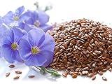 5 Liter ProFair® Leinöl, kaltgepresst, 100% aus reiner Leinsaat - 2