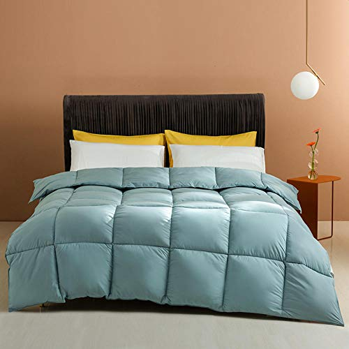 Duvet All Season White Duck Feather and Down Duvet 100% Cotton Shell Anti-dust mite & Feather-proof Fabric-Comforter Warm-Anti Allergy-blue_200x230-4000g