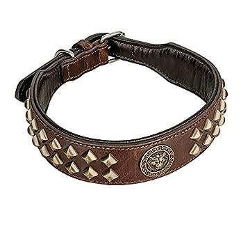 (1. WAHL - NEU!!!) Michur Diego, ein weiches und starkes Hundehalsband aus Leder / Lederhalsband für Hunde! Das Modell Diego ist aus braunem Leder mit goldenen Flachnieten und Löwenkopf Applikation gefertigt. In der Gesamtlänge 65cm und 3,9cm Breite,...