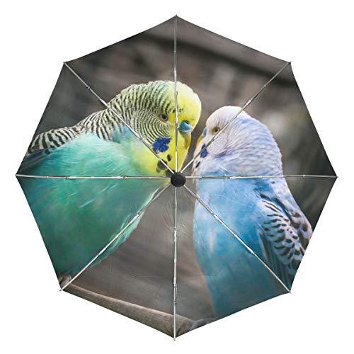 Paraguas de Viaje pequeño a Prueba de Viento al Aire Libre Lluvia Sol UV Auto Compacto 3 Pliegues Cubierta de Paraguas - Budgie Amistad Afecto Love Parrot Parakeet