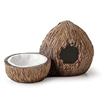 Stylish décor for any terrarium Non-porous surface Easy to clean Comes with a Coconut shaped hideout