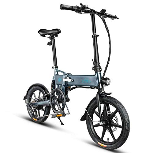 FIIDO D2S Shifting Version 36V 250W 7.8Ah 16 Inches Folding Electric Bike Grey