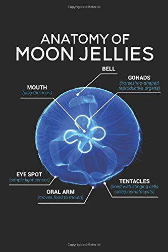 Anatomy Of Moon Jellies: Journal, Notebook, Diary, 120 Blank Lined Pages, 6 x 9 inches, Funny Gift