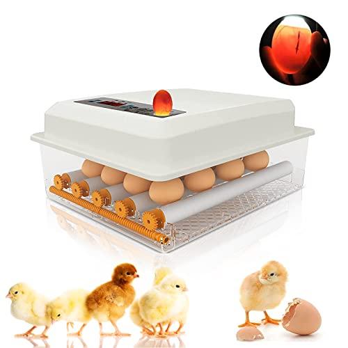 Topqsc -   Eier Inkubator