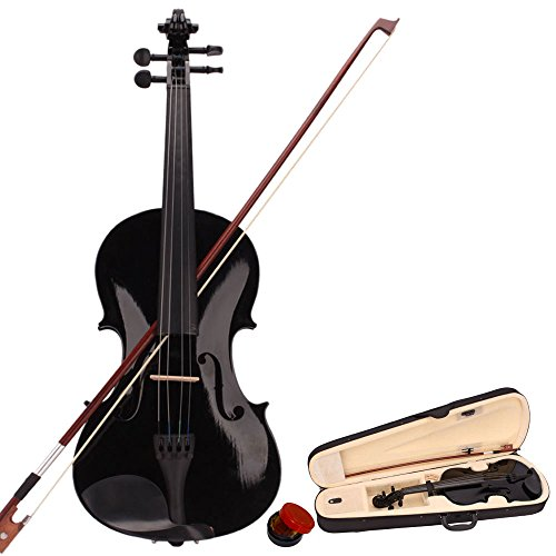 Snaked cat 4/4 Acoustic Violin with Case, Bow, Rosin,...