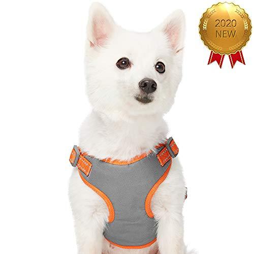 UMI. Essential Pastellfarbenes, reflektierendes Hundegeschirr, Brustumfang 45-53,5cm, Kürbis, Small, verstellbares Geschirr für Hunde