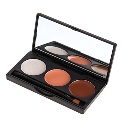 Pure Vie® 3 Couleurs Palette de Maquillage Correcteur Camouflage Crème Cosmétique Set - Convient Parfaitement pour une Utilisation Professionnelle ou
