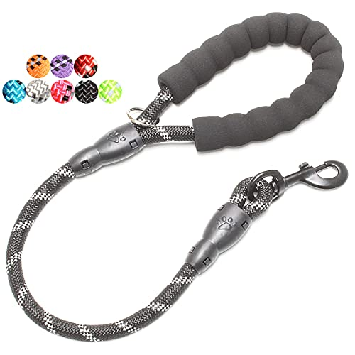 BAAPET 4/5/6 FT Strong Dog Leash with Comfortable Padded Handle and Highly Reflective Threads for...