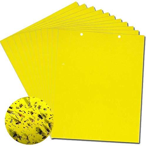 zyh 10 Paquetes de trampas Adhesivas Amarillas para Moscas (6 x 8 Pulgadas,Incluidas Las Bridas),Adhesivo de Papel para Moscas G antifúngico de Doble Cara,Adhesivo para cucarachas