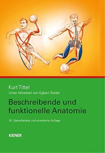 Beschreibende und funktionelle Anatomie