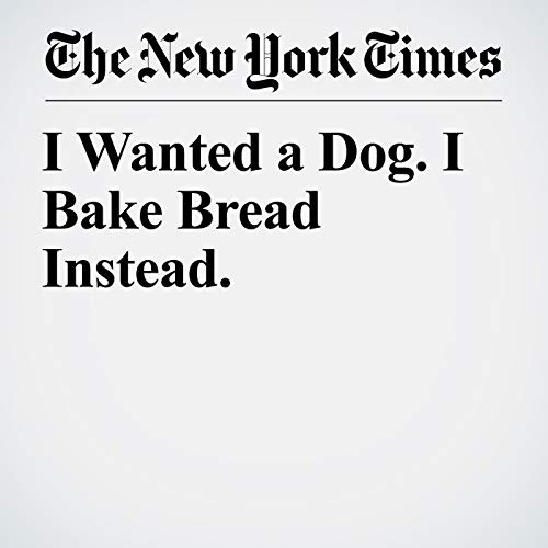 I Wanted a Dog. I Bake Bread Instead. copertina