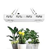 300W 3500K COB LED Grow Light Lámpara de cultivo de espectro completo para plantas de interior que envían Veg Bloom Flower