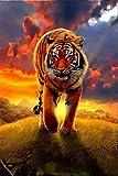 Pintar por nmero, kit de pintura al leo para nios adultos, decoracin casera de bricolaje, educacin sobre descompresin, juguete preferido de regalo Tiger In The Sunset
