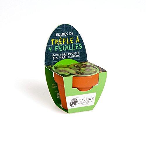Nature & Découvertes - Mini kit de trèfle à 4 feuilles