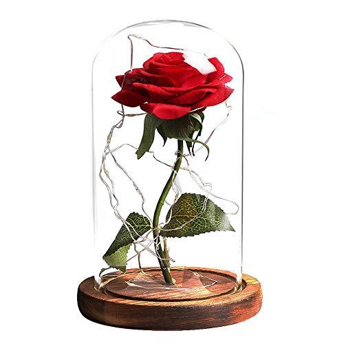 La Bella e La Bestia Rose Incantate, Kit di Rose, Elegante Cupola di Vetro con Base Pino Luci LED, Regali Magici Decorazioni per San Valentino Anniversario di Matrimonio Vacanza, Giorno di Natale