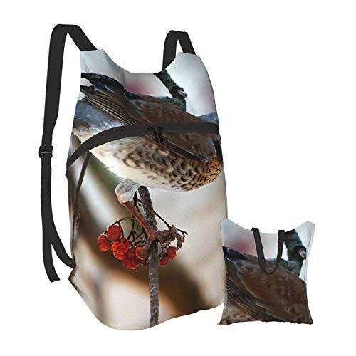 Mochila portátil plegable para adultos, mochila para ordenador, diseño de pájaro, azul, naranja, antirobo, delgada, duradera, para portátiles