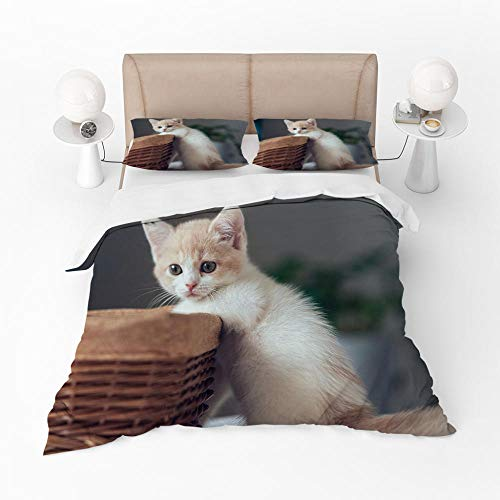 WXFDDP Cute Cat Duvet Cover Single Bedding 3 Piece with Opening and Closing Zipper, Soft Microfiber, Fade & Stain Resistant, Duvet Cover 135x200cm with 2 Pillowcase