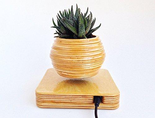 Mile High Planter Levitating Plant System