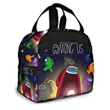 Lunch Bags Insulated Lunch Boxes For Kids Teens Boys Girls Lunch Organizer Cooler Bento Bags Insulated Lunch Tote Cooler Thermal for Climbing Beach Office Picnic