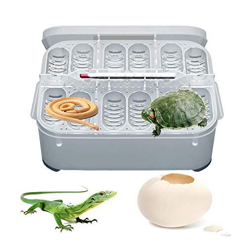 Welltobuy Caja De Eclosión De Reptiles Caja De Cría De Reptiles Profesional Lagarto Pequeño Escalada para Mascotas Reptiles para Incubar Huevos(sin Termómetro)
