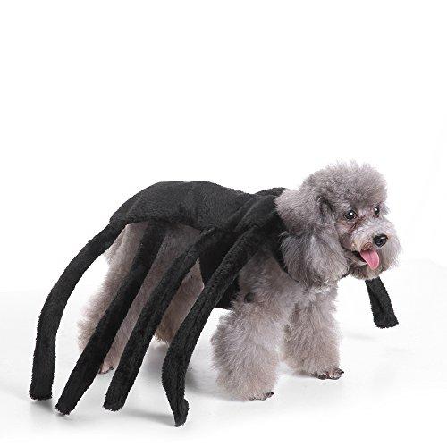 EgBert Ropa De Cama De Navidad Halloween Asustado Viuda Negro Araña Arnés Traje De Perro - S