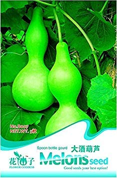 Lagenaria siceraria Big Wine Spoon Seeds Bottle Gourd, emballage d'origine, 5 Graines / Paquet B007