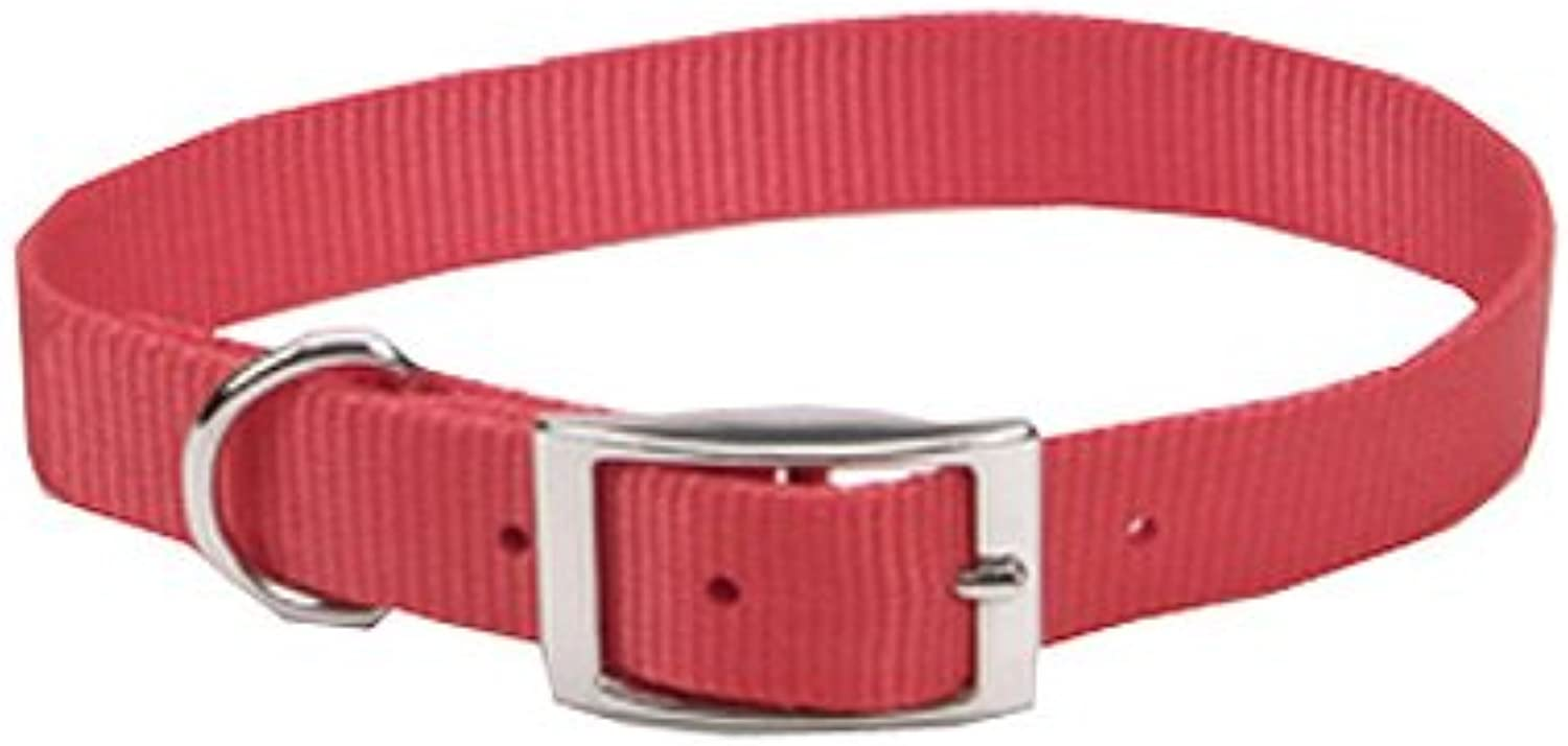Coastal Pet 00601 B RED18 Nylon Collar, 3 4 by 18Inch, Red