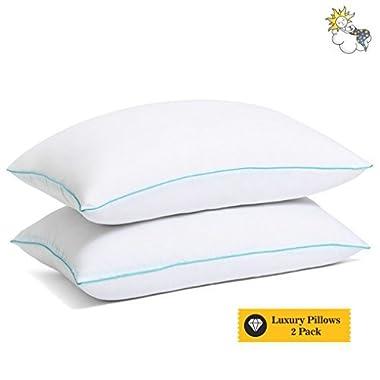 SLEEPY FOLKS Pillow - Pillows Sleeping - Hypoallergenic Pillow 2 Pack - Queen Standard Bed Pillow set of 2 - Cool Sleeping Best Pillow - Down Alternative Hotel Pillow - Medium Soft Firm Pillow