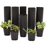 Square Nursery Plastic Flower Pots for Plants, Seedlings (2.6 in, 150 Pack)