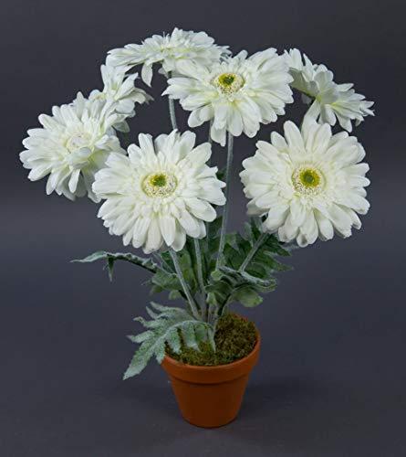 Seidenblumen Roß Gerbera 45cm weiß im Topf LM Kunstpflanzen Kunstblumen künstliche Pflanzen Blumen