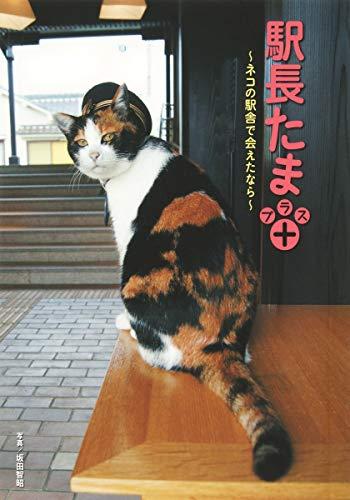 駅長たまプラス ~ネコの駅舎で会えたなら~
