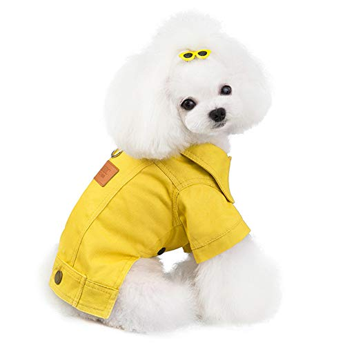 HIMAPETTR Carino Pet Costume Kostuum Grappige decoratie met Invernostai voor Cani, Cowboy