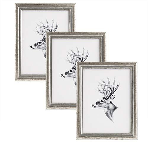 WOLTU 3er Set 21x29,7cm Din A4 Bilderrahmen Artos Stil Holz Rahmen Fotogalerie Glasscheibe, Silber