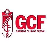 Yo Soy Tu Afición (Himno del 80 Aniversario del Granada CF)