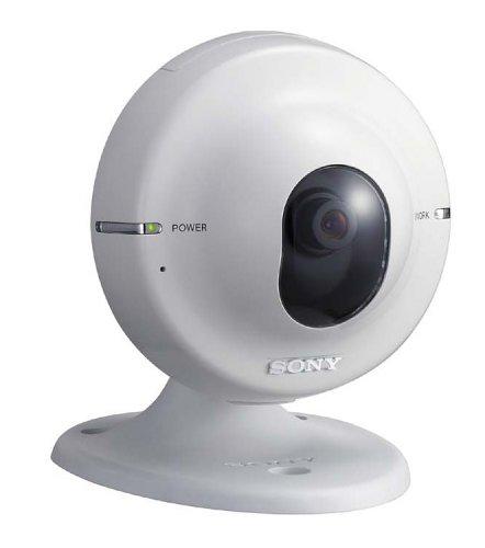 Sony SNC-M1 Fixed IP Network Camera w/Audio