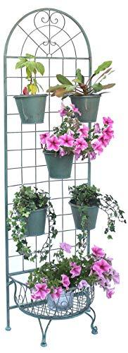 DanDiBo Kräuterregal Gewürzregal Metall Blumentreppe 172 cm Blumenregal 110292 Blumenständer Pflanzenständer Hoch Wand