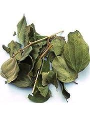 Sidre Leaves: Sidr Natural Jujube Leaf. Verkocht in een hersluitbare pot om de hele bladeren te beschermen (Rokia Chariaa)