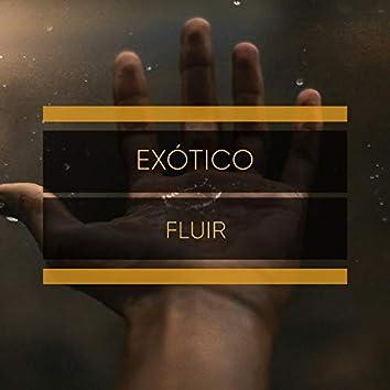 # 1 Album: Exótico Fluir