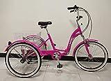 Quality Products Tricycle pour Adultes, vélo à Trois Roues, Cadre Repliable, Vitesses Shimano à 6 Vitesses, Cadre en Alliage,...