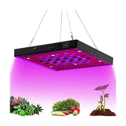 Luz LED de cultivo de espectro completo, 81Leds 1000W, fitolamp para planta de interior, 2835 LED, fitolamp de crecimiento hidropónico para plantas