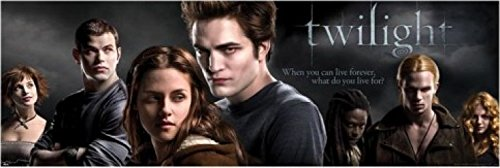 1art1 Twilight - What Do You Live for? I Tür-Poster 158 x 53 cm