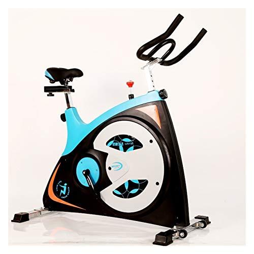 JINSUO Bicicleta de spinning Fitness Deporte Equipamiento Familiar Bicicleta de Ejercicio Hogar Gimnasio Ciclette Bicicleta Spinning Slimming Volante 13KG (Color: Azul)