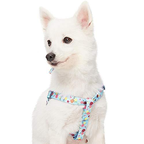 Amazon Brand - Umi Made Well Harnais réglable pour Chien, Taille M, Largeur de poitrail 51 à 66 cm, Motif Floral, Bleu Clair