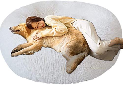 jHuanic Cuccia Cane Morbida,Rilassante Anti Ansia Letto per Cani Gatto,Cuccia per Cane,Sollievo e Miglioramento del Sonno,Cuscino Rotondo in Morbido Peluche Cuccia Cane Grande (XXXL-120cm,Bianca)