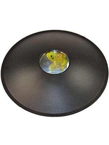 BUSDUGA 3D Hologramm inkl. Frosch - Optische Täuschung - die magische Schale bei dem jeder staunen Wird