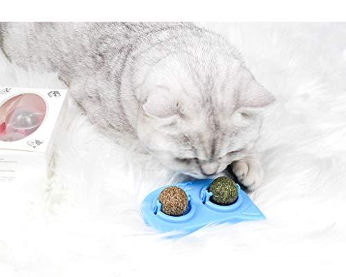 Natural Cat Treats Cat Toy Lollipop Ball Tease Toy Molar Stick Best Gift For Cat,Cat Mint Ball Stick Catnip Toys Cat Dental Chews Teeth Cleaning (Light blue)